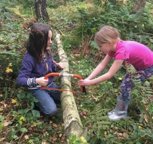 wildcraft forest school
