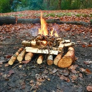 Campfire at a wildcraft session